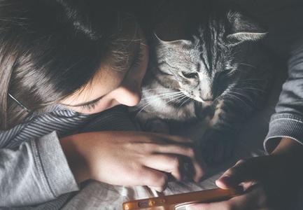 退会前のデータを使えるか猫とチェックする女性