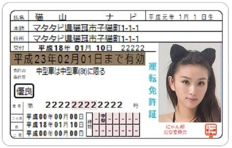 免許証の画像データ
