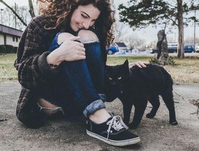 女性のサポートを期待する猫